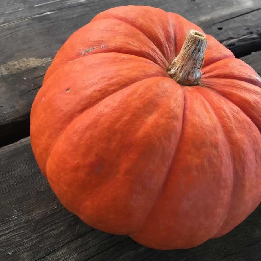 Φθινόπωρο στα Ζαγοροχώρια & το Πωγώνι